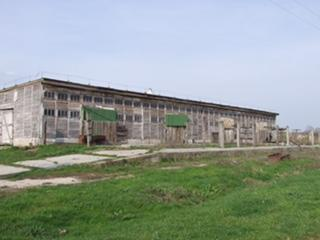 Hungary - livestock farm for sale