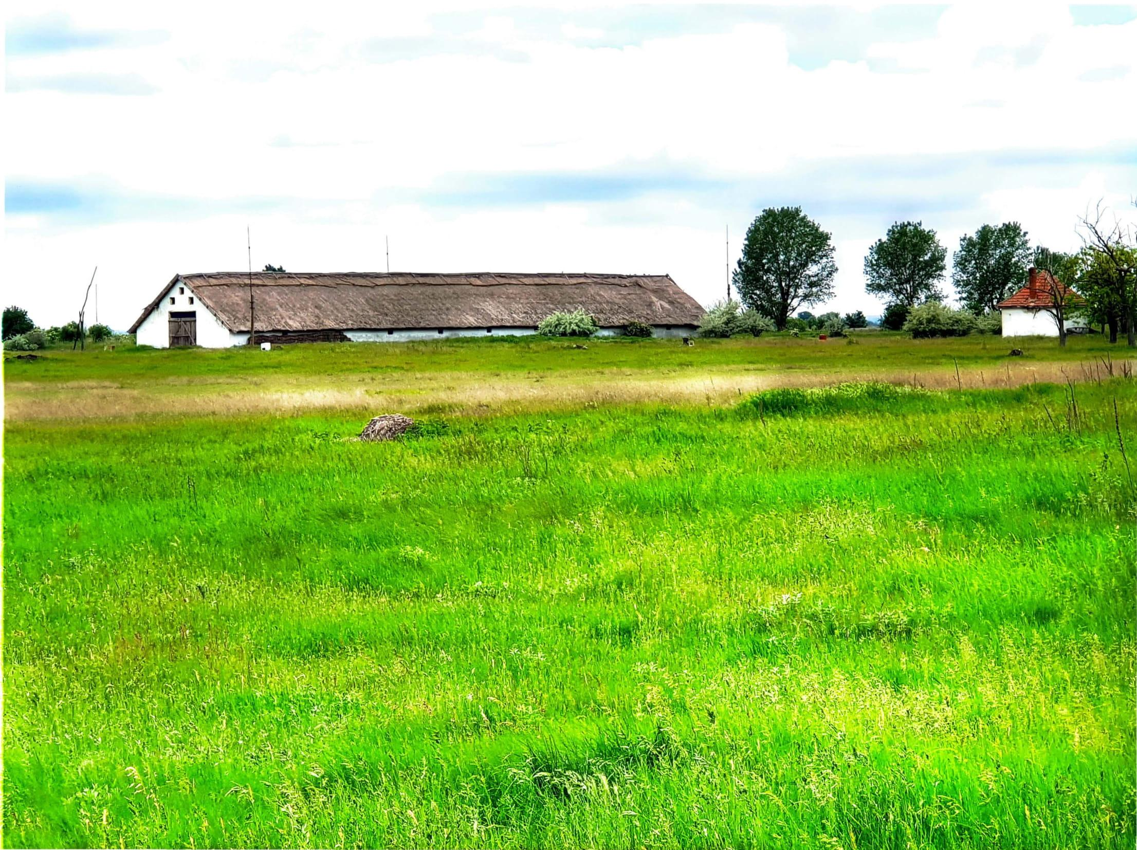 Hungary - LIVESTOCK FARM FOR SALE. Ref : H1