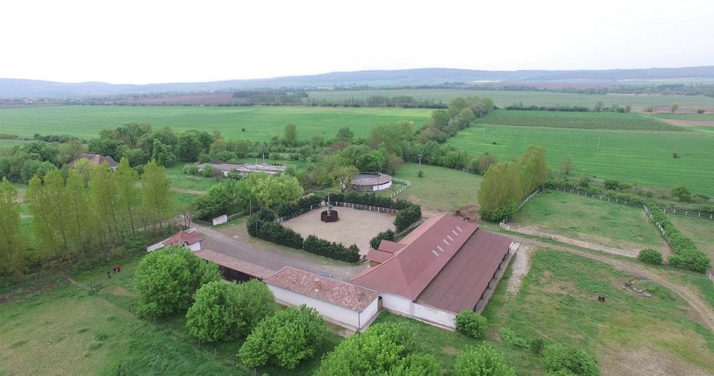 Farm in Hungary - Stud farm for sale