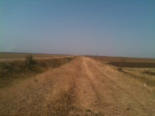 Romania -arable land for sale.