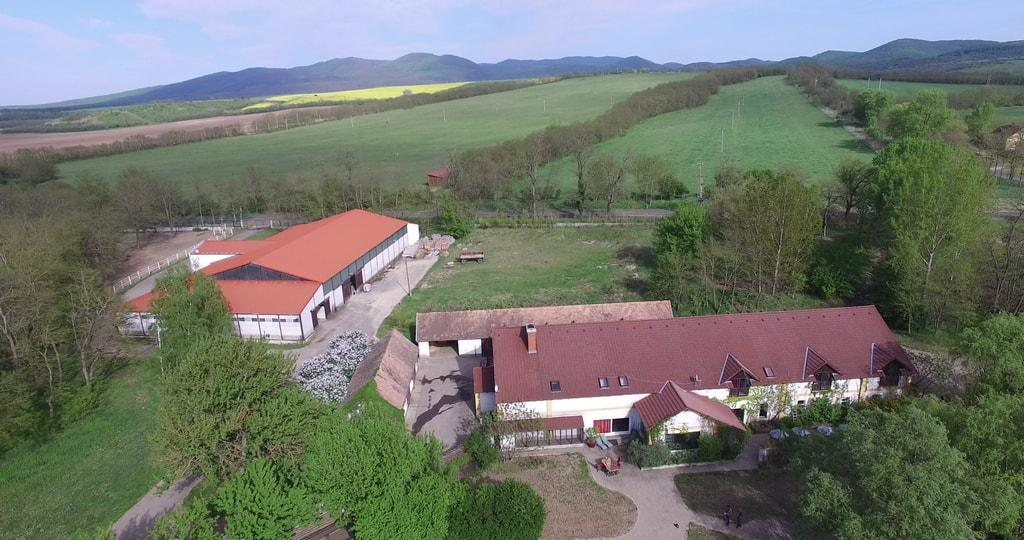 Farm in Hungary - studfarm for sale