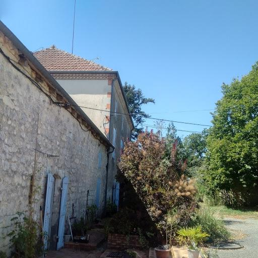 FRANCE -Irrigated Hazel nut farm for sale Ref-L14