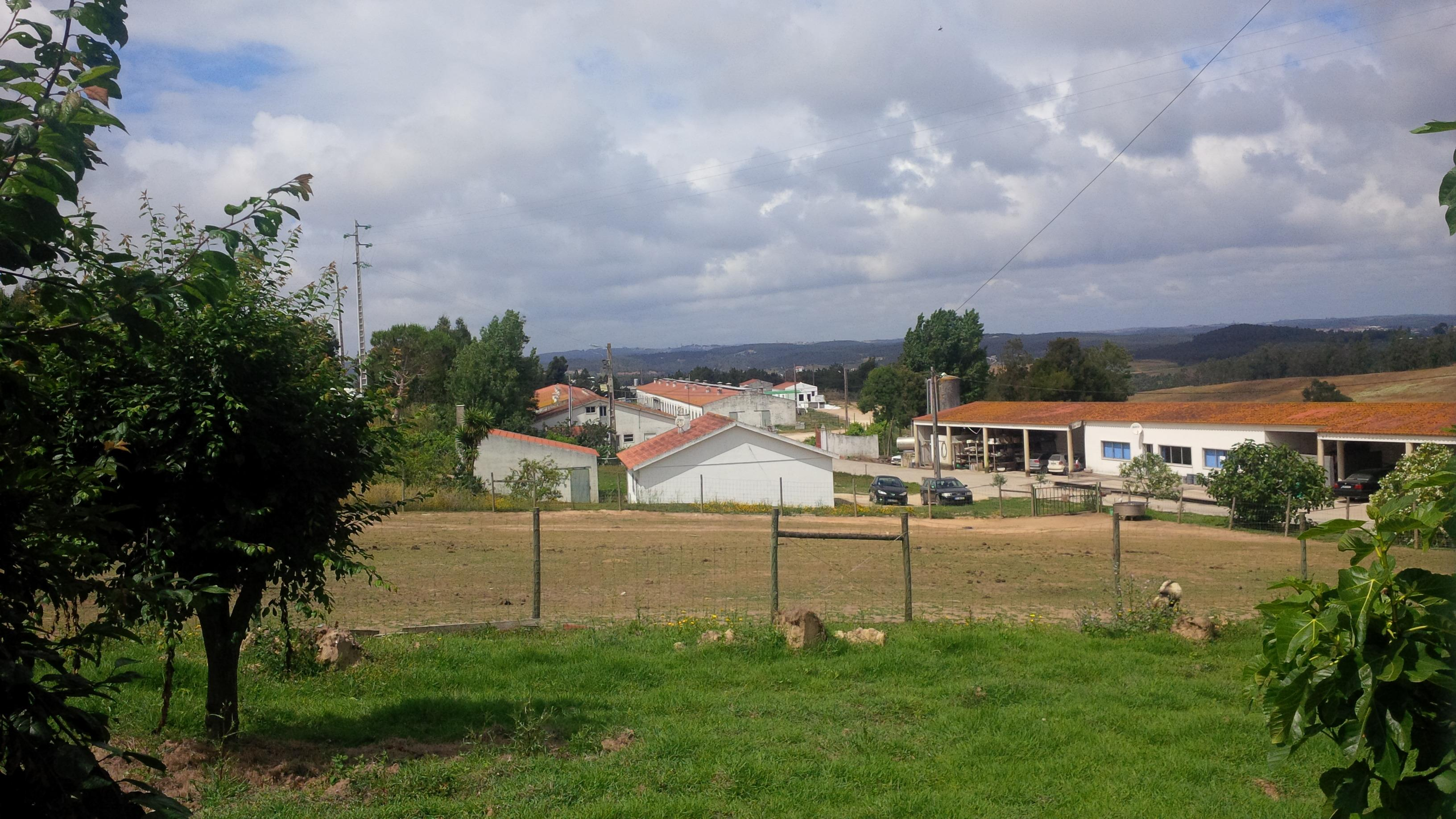 Portugal - pig farm for sale  Ref  P02
