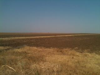 Romania  -  arable land for sale.......Ref R03